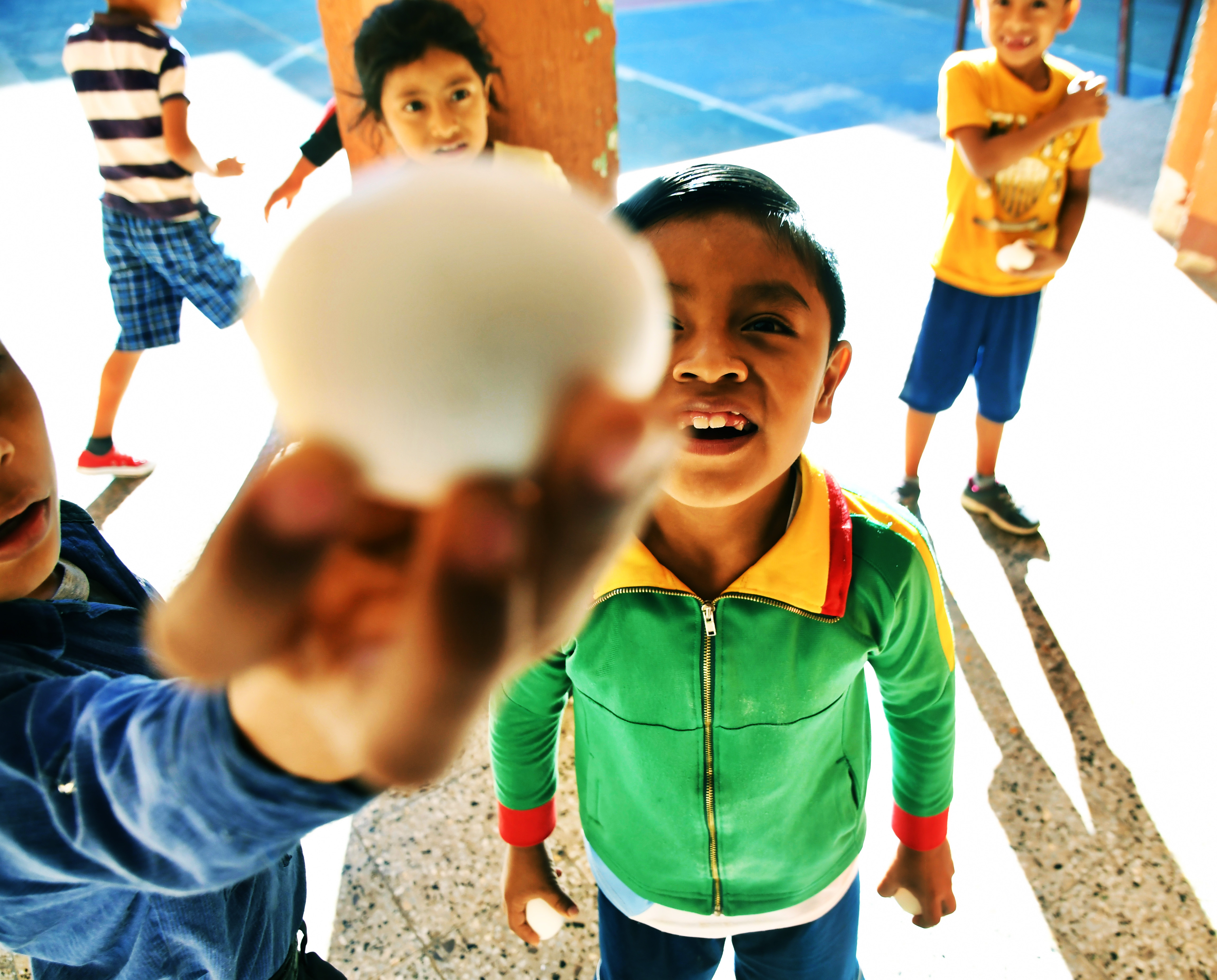 One Egg a Day: Annual Impact Report